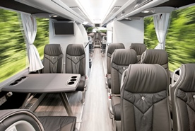 Busses in different categories  with pleasant interior